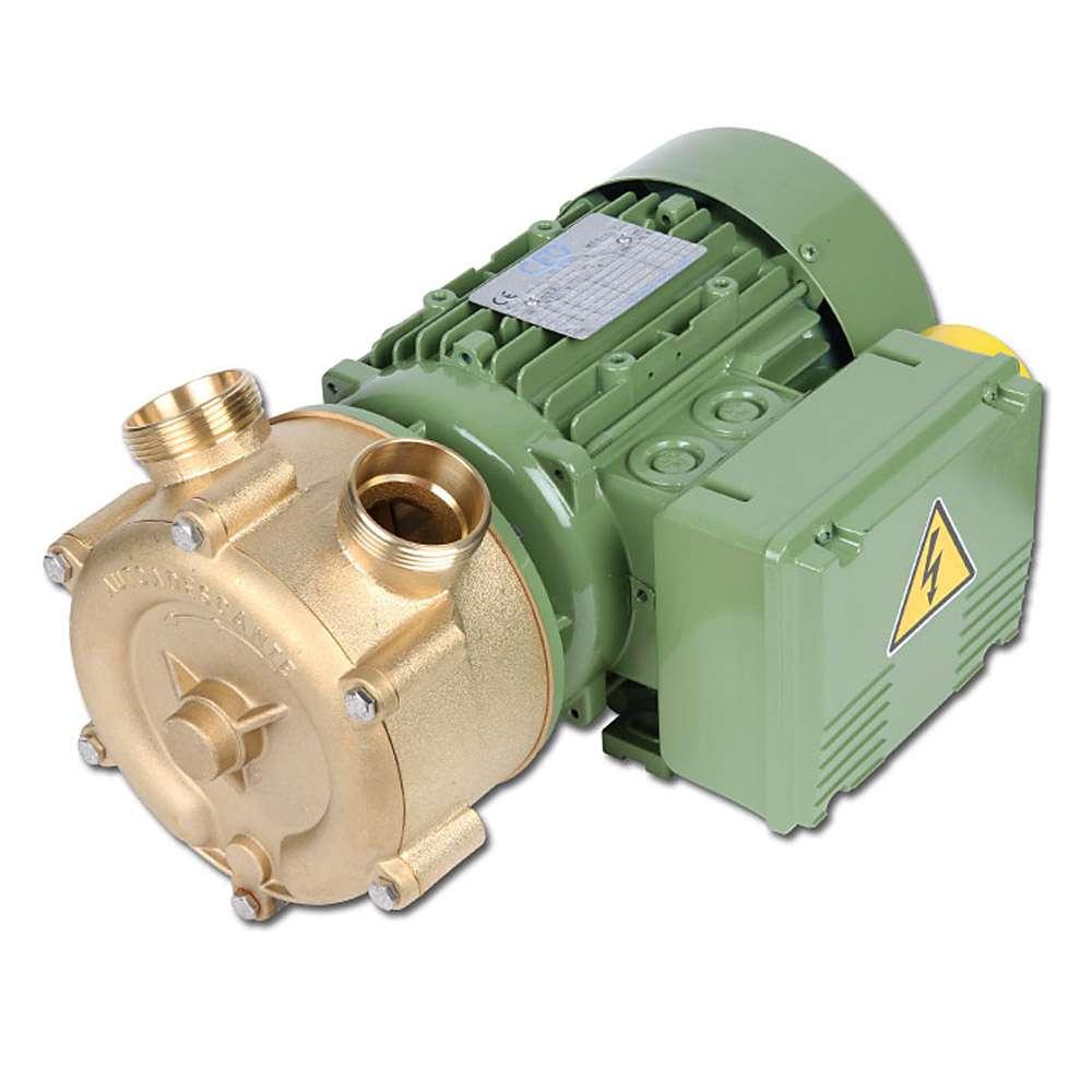 Pompe centrifuge à canal latéral de bronze - avec moteur à courant alternatif / rotation / cc