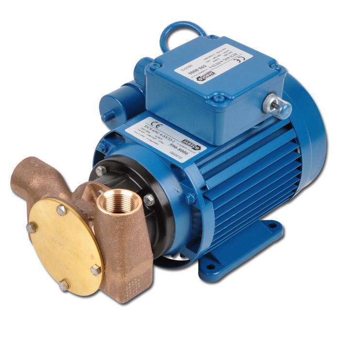 Mehrzweck-Impellerpumpe BG020 - 18 l/min - selbstansaugend - 230 V - 1450 U/min