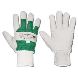 "Handschuh - ""Keiler-Forst"" - Dolmar"