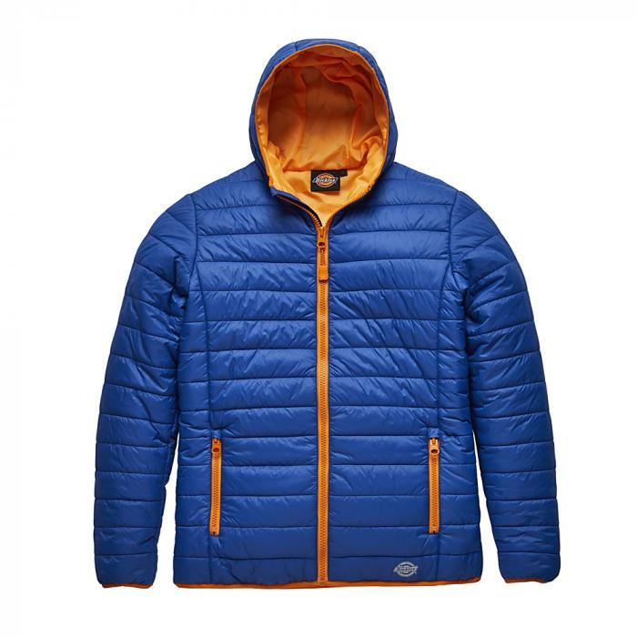 Vatterad jacka Stamford - Dickies - storlekar S till 4XL - kungblå / orange