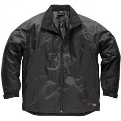 "Jacket ""Thornley"" - Dickies - Black - wind and weather protection"