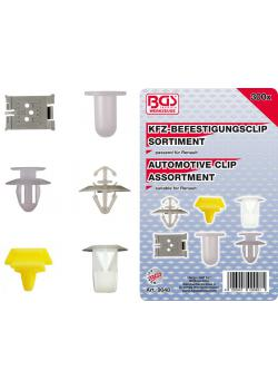 Car clip range - for Renault - 300 pcs.